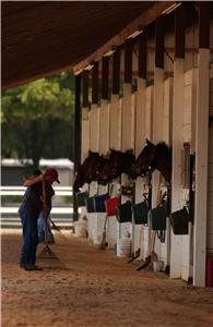 Ocala Training Facilities New Episode Training Center